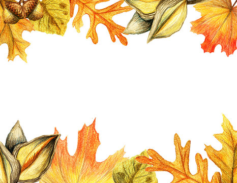 Autumn leaves and acorn border frame with space text on transparent background. Seasonal floral maple oak tree orange leaves with gourds for thanksgiving holiday watercolor pencils illustration