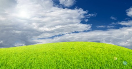 Fototapete - green field grass with a blue sky and moving clouds. Beautiful landscape.