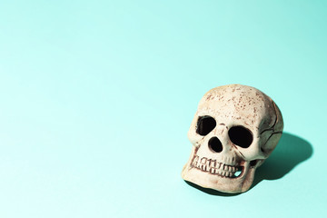 skull with a hard shadow on mint background