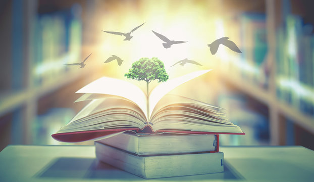 The concept of education by planting knowledge trees and birds flying to the future to open old books in the library, beautiful blurred background