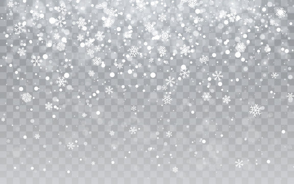 Christmas snow. Falling snowflakes on transparent background. Snowfall. Vector illustration
