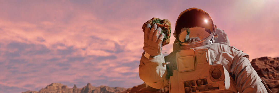 life on planet Mars, astronaut discovers bacterial life on the surface of a rock