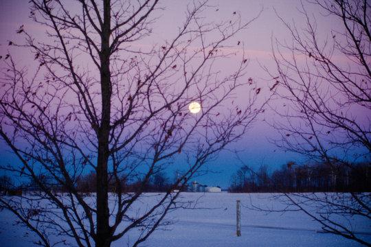 Indiana Winter Moon