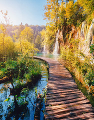 Wall Mural - Majestic view on turquoise water and sunny beams. Location Plitvice Lakes National Park, Croatia, Europe.