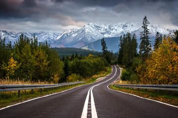 Photo sur Toile Route dans la forêt Droga