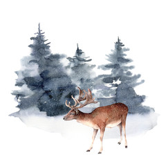 Watercolor deer in winter forest. Hand painted Christmas illustration with animal and fir trees isolated on white background. Holiday card for design, print, fabric or background. Wildlife and foggy.