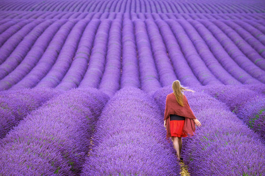 A young woman standing alone between rows of purple lavender in bloom in a field on the Plateau de Valensole