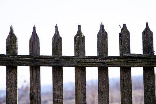 old wooden fence in garden