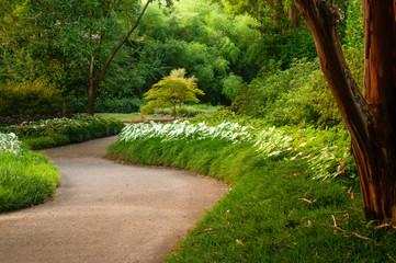 Dallas Arboretum Path