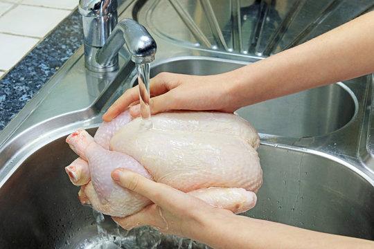 Washing A Fresh Raw Chicken Under Tap Water In The Kitchen Sink.