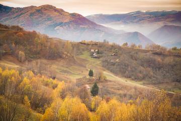 Canvas Prints Honey Autumn golden colors mountain landscape