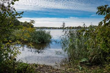 Ufer der Havel südlich von Schildhorn