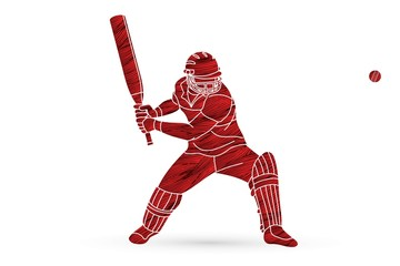 Cricket batsman sport player action cartoon graphic vector