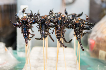 Deep fried scorpions selling at the Bangkok night market.Fried insects is one of the famous snack in Thailand.