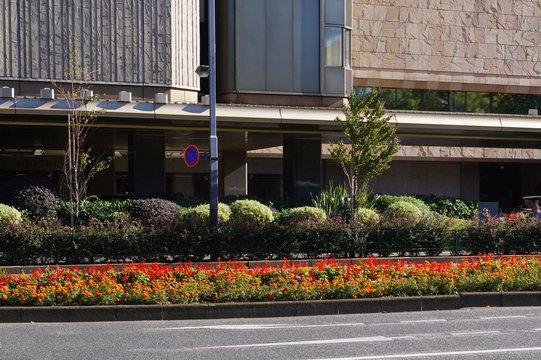 道路の中央分離帯の花壇