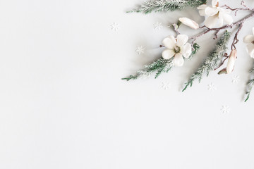 Christmas composition. Fir tree branches, flowers on pastel gray background. Christmas, winter, new...
