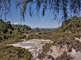 Salt Flats in Wai-O-Tapu thermal landscape
