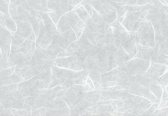Photo sur Toile Aigle 白い和紙雲竜紙