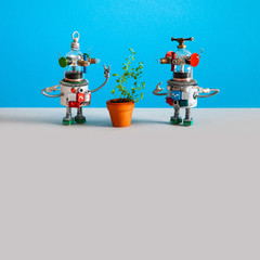 In de dag UFO Two funny mechanical ufo toy are surprised to see a living plant in a clay flower pot. Gray background, empty space