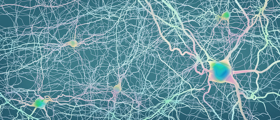 Connected neurons or nerve cells- 3d illustration