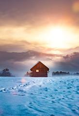 Wall Mural - Blockhaus mit Leuchtendem Fenster im Winter bei Dämmerung