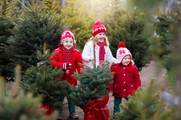 Kids buying Christmas tree