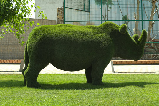 Beautiful rhinoceros shaped topiary at zoo on sunny day. Landscape gardening