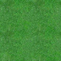 Green Grass Seamless Texture