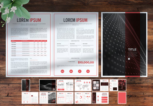 Business Report Layout with Red Accents