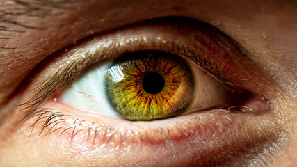 Spoed Fotobehang Iris close up of human eye