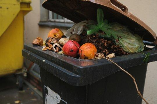 Organic waste bin filled with kitchen waste 01