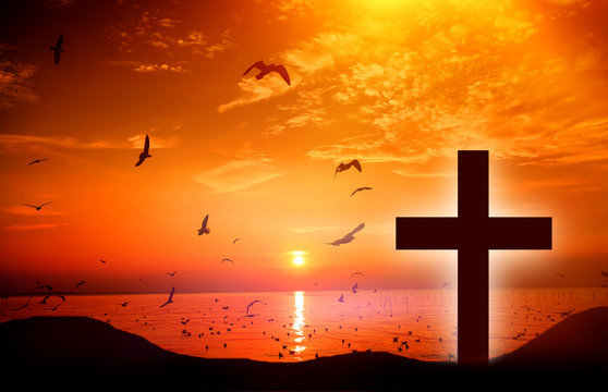 Christmas concept: the symbol of the cross of Jesus Christ on earth The back with a soft glow of sunset And birds that fly like freedom, like love, sacrifice, beautiful mercy