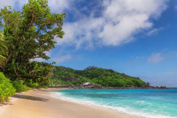 Fototapete - Tropical sunny beach and turquoise sea in Anse Takamaka beach, Seychelles.