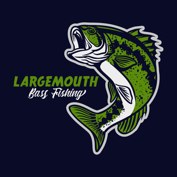 largemouth bass fishing club logo illustration in blue background