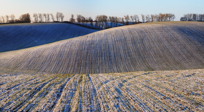 winter field. picturesque sunset in a snowy field
