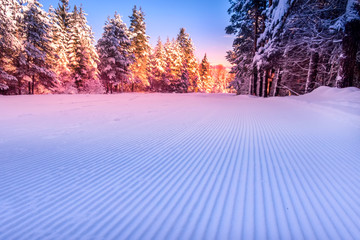 Close-up groomed snow at Bansko resort, Bulgaria panorama with ski slope and pink morning or sunset forest trees