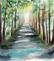 Keuken foto achterwand Olijf Watercolor picture of a sunlit forest alley with tree shadows and spots of light