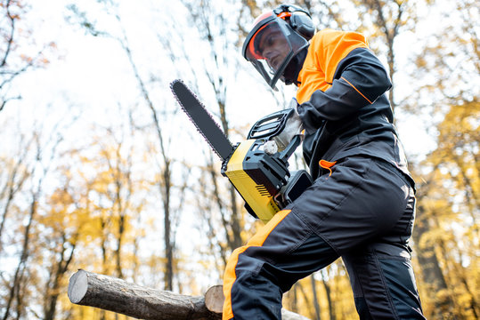 Professional lumberjack in protective workwear working with a chainsaw in the forest. Woodcutter makes a logging outdoors