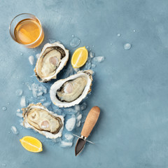 Fresh raw oysters, square overhead shot on ice with a glass of white wine, lemon slices, and a...