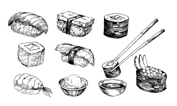 Sushi sketch. Hand drawn illustration converted to vector. Isolated on white background