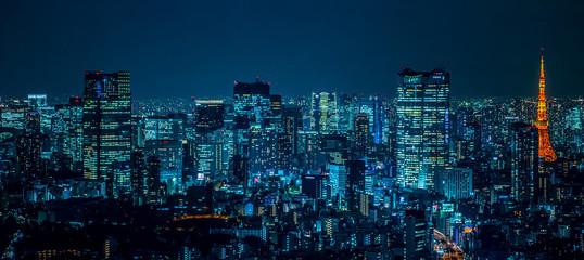 東京都市風景 夜景 Night view of Tokyo Japan