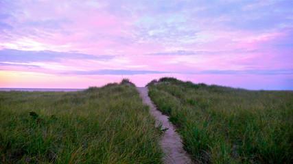 Printed kitchen splashbacks Purple Cape Cod Sunrise