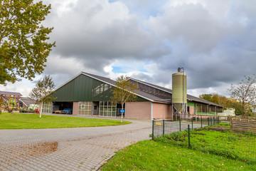 Completely modernized open farm in the Netherlands