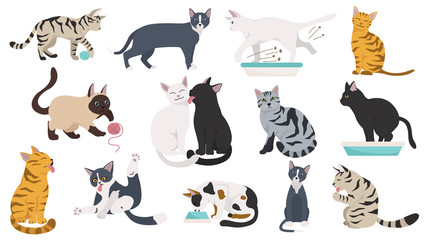 Cartoon cat characters collection. Different cat`s poses, yoga and emotions set. Flat color simple style design. Fototapete