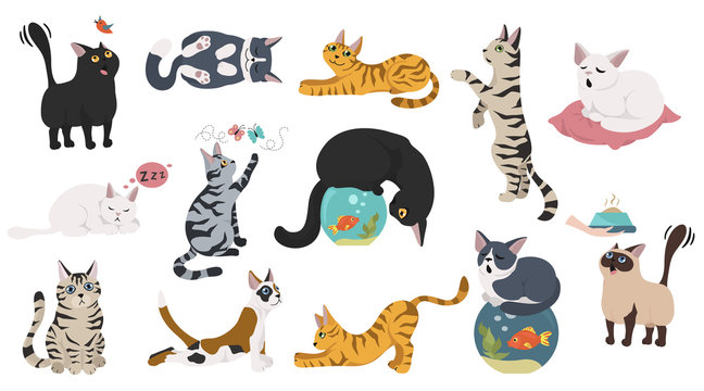Cartoon cat characters collection. Different cat`s poses, yoga and emotions set. Flat color simple style design.
