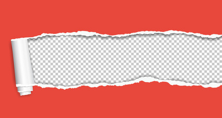Rolled and ripped red notebook paper sheet is on squared background for text. Vector illustration
