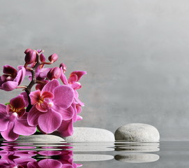Composition with spa stones, orchid pink flower on grey background.