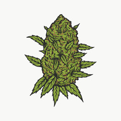 Handdrawn vintage cannabis bud vector illustration