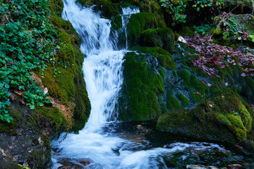 Fotobehang Watervallen Clean mountain river in the autumn forest..Waterfall on a mountain river.