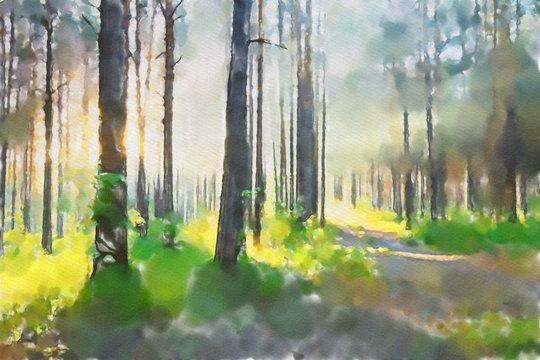 watercolor colorful illustration